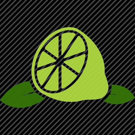 fruit, leaf, lemon, lime, orange icon