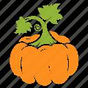 food, fruit, pumpkin, vegetable icon