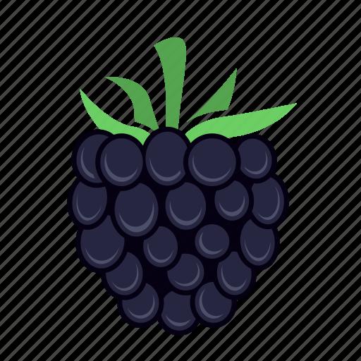 berry, blackberry, food, fruit icon