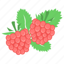 berry, food, fruit, raspberries, raspberry icon
