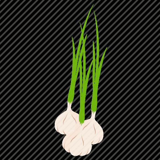 food, garlic, vegetables icon