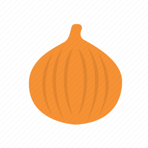 food, onion, vegetable icon