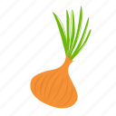 food, onion, vegetables icon