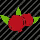 breakfast, food, fruit, pomegranate