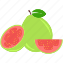 food, fruit, guava, tropical icon