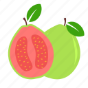 day, fruit, guava, megan