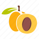 apricot, food, fresh, fruit icon