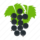 berry, currant, food, red, redcurrant icon