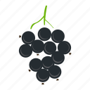 berries, currant, food, fresh, fruits, healthy icon
