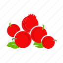 berry, currant, food, fruit, red, summer icon