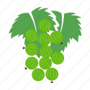 berry, food, fruit, fruits, gooseberry icon