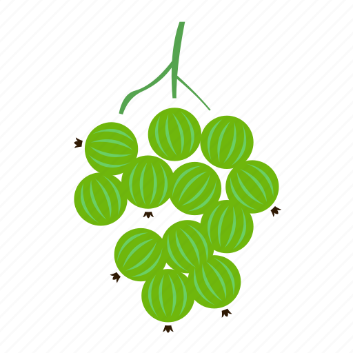 colour, food, fruit, gooseberry, green icon