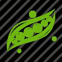 food, pea, peas, vegetable