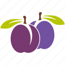 food, fruit, plum, sour icon
