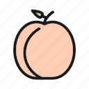 food, fruit, peach, vegetable icon