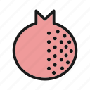 food, granate, pomegranate icon