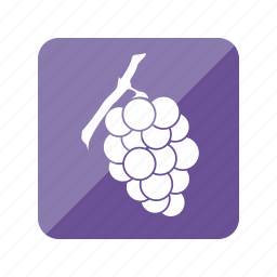 fruit, fruta, grapes, racimo, uvas, wine icon