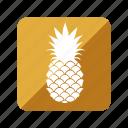 fruit, fruta, pineapple, piña