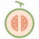 cantaloupe, cut, fresh, fruit, half, melon, organic icon