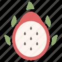 dragon fruit, dragonfruit, fresh, fruit, nature, organic, tropical icon