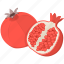 cooking, food, fruit, garnet, kitchen, meal, plant icon
