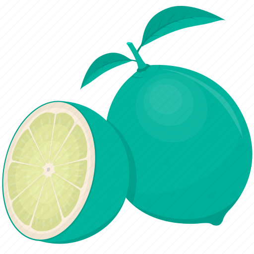 citrus, food, fruit, kitchen, lime, meal, plant icon