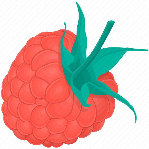 cooking, food, fruit, kitchen, meal, plant, raspberries icon