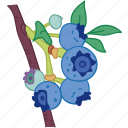 blueberries, blueberry, flavor, fruit icon
