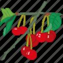 cherries, cherry, flavor, fruit icon