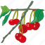 cherries, cherry, flavor, fruit icon