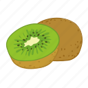 flavor, fruit, kiwi, kiwis icon
