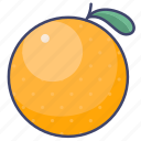 fruit, orange, citrus