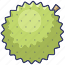 durian, food, fruit icon