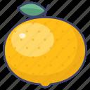 fruit, mandarin, orange, tangerine icon