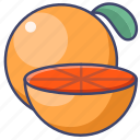 fruit, grapefruit, gastronomy