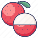 fruit, litchi, lychee icon
