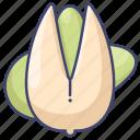 food, nut, pistachio, snack icon