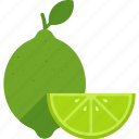 food, fruit, green, leaf, lime, slice, whole icon