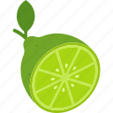 cut, food, fruit, green, leaf, lime icon