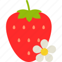 berry, flower, food, fruit, healthy, leaf, strawberry icon
