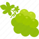 bunch, food, fruit, grape, healthy, leaf, vine icon
