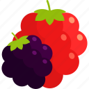 berry, blackberry, bunch, food, fruit, healthy, raspberry icon