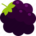 berry, blackberry, bunch, food, fruit, healthy, leaf icon