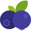 berry, blueberry, bunch, food, fruit, healthy, leaf
