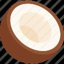 coconut, cut, food, fruit, tropical icon