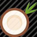 coconut, cut, food, fruit, leaf, tropical icon