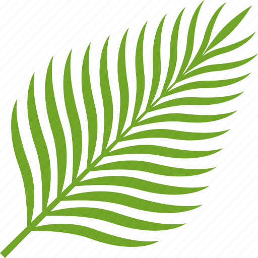 Coconut Food Fruit Leaf Palm Tropical Icon Download On Iconfinder Tropical, leaf icon in summer icons ✓ find the perfect icon for your project and download them in svg, png, ico or icns, its free! coconut food fruit leaf palm tropical icon download on iconfinder