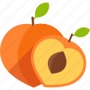 cut, food, fruit, peach, seed, tropical, whole icon