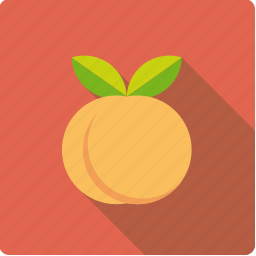 apricot, food, fruit, leaves, peach icon