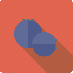berry, blueberries, food, fruit icon